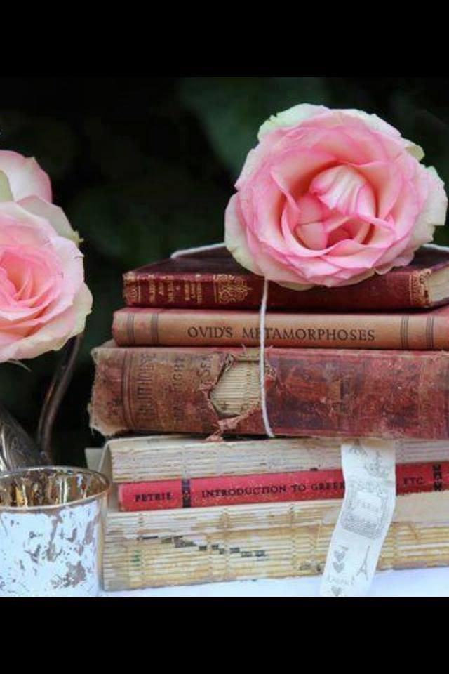 B. de Souza - Improbables librairies, improbables bibliothèques